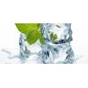 E-liquide goût saveur Ice Menthe pour votre E-cig